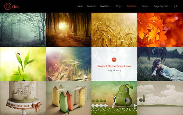 divi 2 images and portfolios
