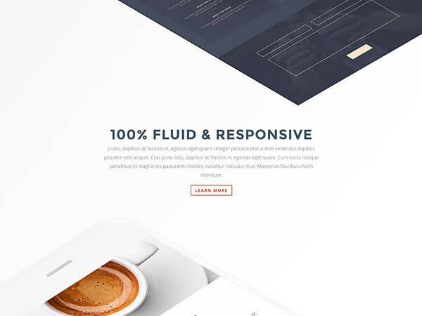 divi builder plugin fluid and responsive