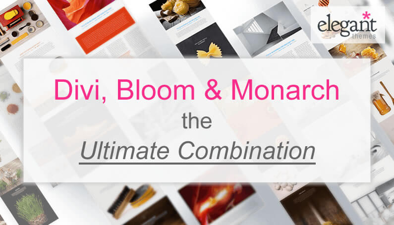 Divi, Bloom and Monarch – the ultimate combination