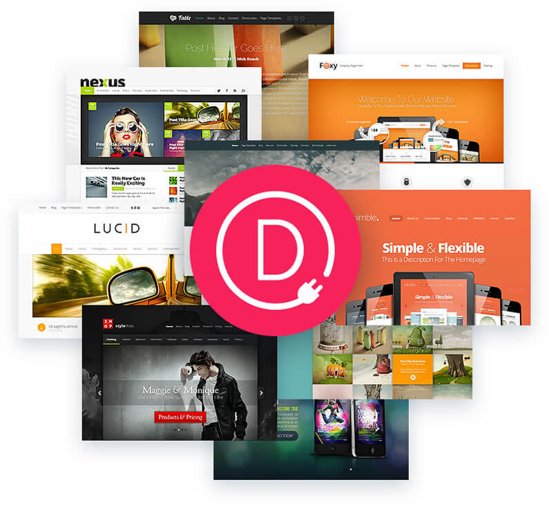 divi builder plugin works with any theme
