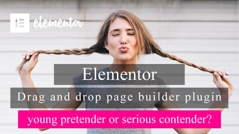 Elementor – young pretender or serious contender